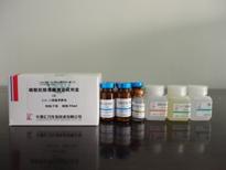 磷酸肌酸激酶(CK)测...